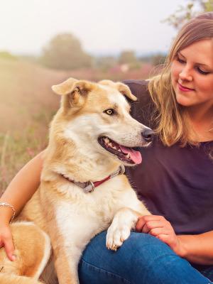 Hundefotografie Susannehelling Mischling